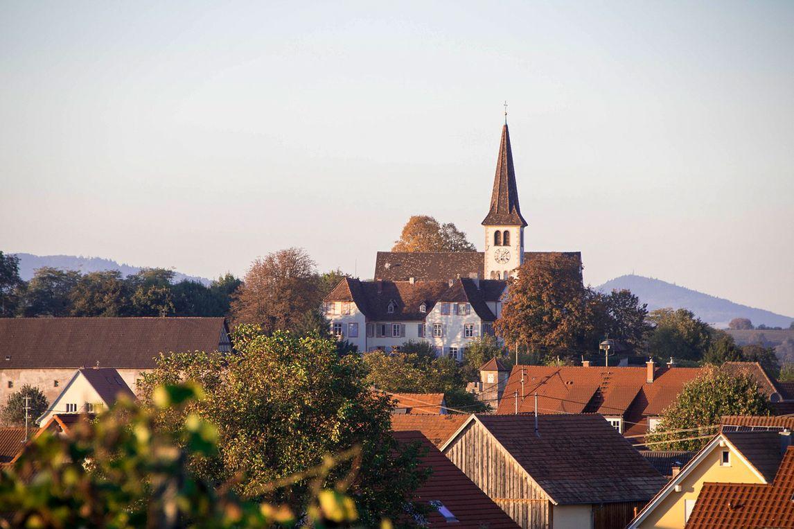 Chat Breisgau