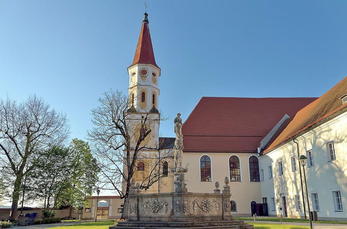 Chat Braunau